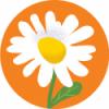 TVU – GRAFIKA (likovna delavnica)